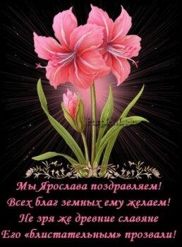 Поздравление Ярославу в стихах