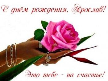 Поздравления Ярославу от жены