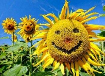 Поздравляю всех с Днем смеха