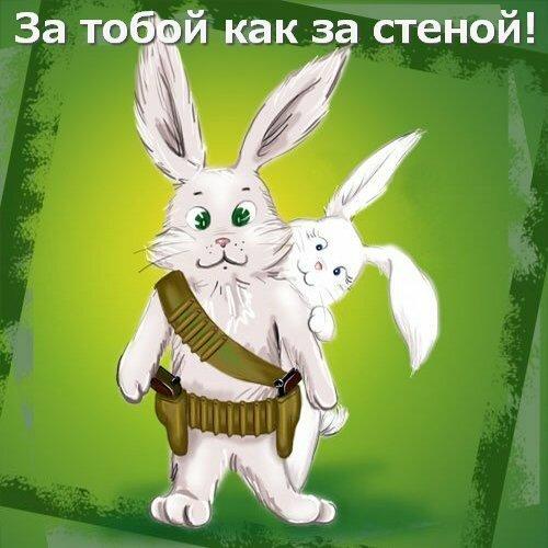 прикольные поздравления зайца бордюры